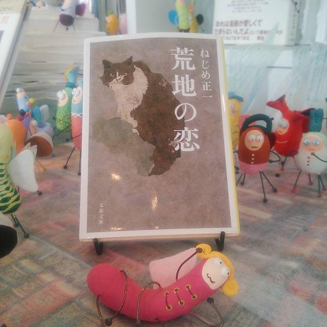 『荒地の恋』ねじめ正一文春文庫#books #instabooks #booklovers #bookworms #readingbugs #本#読書倶楽部#活字中毒#読書