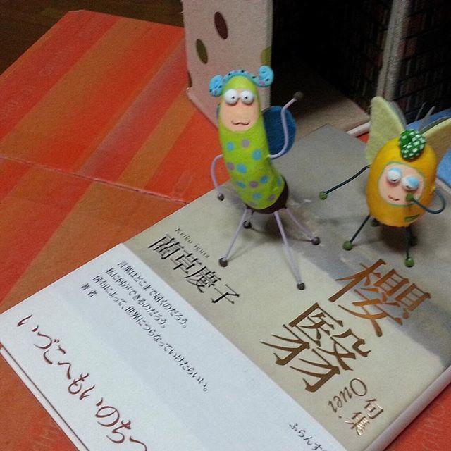 『句集 櫻翳』藺草慶子  フランス堂滋賀県へ旅立った2匹。早速里親さまの本棚でのびのびしている様子♪( ´▽`) #book #books #instabooks #booklovers #bookworms #readingbugs #本 #本の虫 #読書倶楽部 #藺草慶子 #俳句