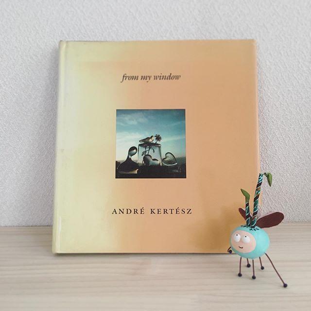 『from my window』André Kertész  New York Graphic Societyアンドレ ケルテス晩年の写真集。年老いて出歩けなくなったケルテスがNYの自宅で撮ったもの。他にも窓から見える街の様子を撮影しているものなどがあるけれど、この本は奥さんを亡くした後に、ガラスのオブジェを彼女に見立てたり、彼女の影を追うかのような室内がポラロイドで撮られた小さな写真集。全盛期の作品とは違う、なくした者と過ごした時間への切ない想いに溢れている。そして、場所も機材も関係ない彼の才能が静かに感じられて大好きな一冊。どの写真にも心がぎゅっとなる。本の虫の頭の葉っぱが折れてた。。直さなければ。。 #frommywindow #andrekertesz #newyork #graphic #photo #アンドレケルテス #写真集 #ポラロイド #readingbugs #book #本の虫